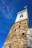 一座古老城堡的塔 免版税库存照片