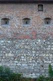 一座古老城堡的大石墙,长满与巨型的常春藤在利沃夫州, Ukrain分支 图库摄影