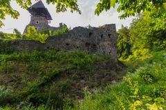 一座古老城堡的被破坏的墙壁在绿色灌木的 免版税库存图片