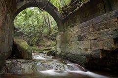 一座古老桥梁的废墟在森林里 图库摄影