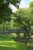 一座可爱的长,木和钢桥梁,在水间距,在一个豪华的泰国公园 图库摄影