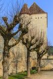 一座城堡 免版税库存图片