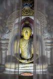 一座寺庙的大气射击在帷幕的菩萨许多雕塑之一后在Dambulla洞寺庙里面的 亦称Th 免版税库存照片
