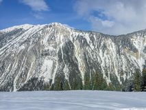 一座山在有雪和树的法国 免版税库存照片