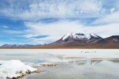 一座山在沙漠 免版税库存照片