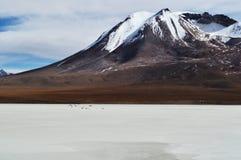 一座山在沙漠 库存照片