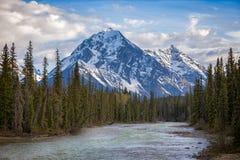 一座山在贾斯珀国家公园 免版税库存照片