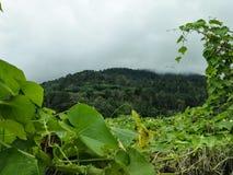一座山的上面与云彩的 免版税库存图片