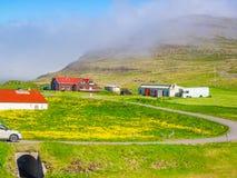 一座山的冰岛风景与黄色花的领域的 库存照片