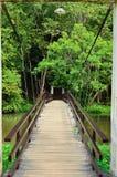 一座平安的小石城桥梁的一张美好的正面图 免版税库存图片