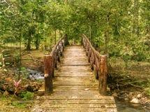 一座桥梁在Bukit Wang瀑布, Jitra,吉打 库存图片