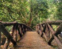 一座桥梁在Bukit Wang瀑布, Jitra,吉打 图库摄影