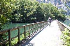一座桥梁的骑自行车者在熊道路在阿斯图里亚斯 免版税库存图片