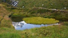 一座积雪的山的反射在一个小池塘 库存照片