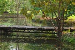 一座简单的土气木小径桥梁,跨过小在一个豪华的泰国庭院公园停滞池塘 库存图片