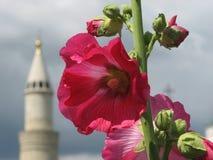 一座红色花和尖塔在Boghar,鞑靼斯坦共和国,俄罗斯 图库摄影