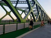 一座绿色桥梁的骑自行车者 库存图片