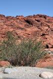 一座美丽的山景色 免版税库存图片