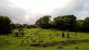 一座老爱尔兰公墓 免版税库存图片