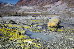一座活火山的火山口的表面 新西兰 免版税图库摄影