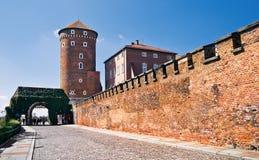 一座Wawel城堡的看法早晨 免版税库存图片