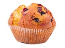 一开胃,杯形蛋糕用在白色背景隔绝的葡萄干 免版税库存图片