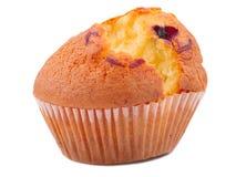 一开胃,杯形蛋糕用在白色背景隔绝的葡萄干 库存图片