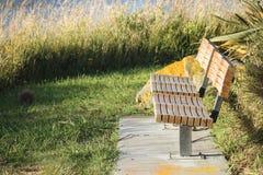 一张公园长椅在新西兰 免版税库存照片