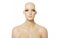 一张女性时装模特面孔的头 免版税库存照片