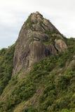 一张山岩石面孔的垂直接近的视图与有些树的在白色多云下- pico e serra做lopo 库存照片