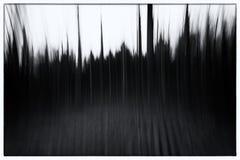 一张概念性照片的一张黑白照片使用树的缓慢的快门速度的在森林陈列的离开和道路 免版税库存照片