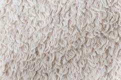 一张白色地毯的纹理 免版税库存图片