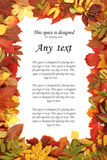一张白色纸片在秋天框架的 库存照片