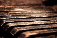 一张老公园长椅早晨 免版税库存照片