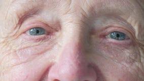 一张资深白种人妇女` s面孔的画象 影视素材