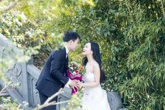 一张年轻夫妇婚礼照片/画象在一座古老老桥梁在上海shui水bo parkpark  库存图片