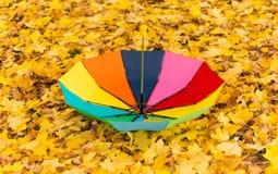 一把五颜六色的伞在秋天的雨中离开 免版税库存照片