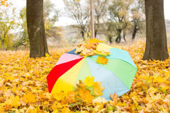 一把五颜六色的伞在秋天的雨中离开 图库摄影