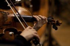 一把小提琴的片段在音乐家的手上 库存照片