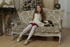 一把扶手椅子的女孩有在圣诞节的一只猫的 免版税库存照片