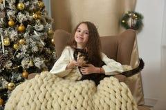 一把扶手椅子的女孩有在圣诞节的一只猫的 库存图片