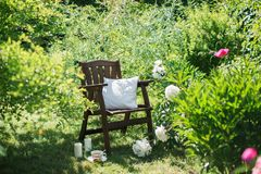 一把木椅子在庭院和茶里 免版税库存照片