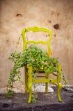 一把椅子的花圃作为在家在土气样式的装饰 免版税库存图片