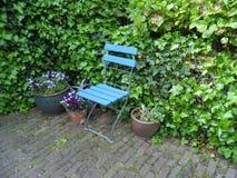 一把浅兰的椅子在庭院里 免版税库存图片