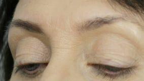 一把特别刷子绘有眼眉阴影的眼眉 接近的视图 做构成的专业化妆师对中部 股票视频