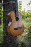 一把老打破的吉他栓与绳索对树 牛仔党的装饰 图库摄影