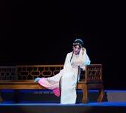 """一把死的睡眠这紫色簪子--江西linchuan† opera""""four梦想  免版税库存图片"""
