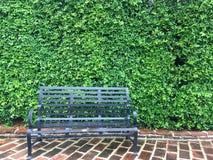 一把黑长的椅子在庭院里 免版税图库摄影