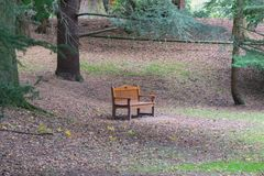 一把solitrary长木凳椅子 库存图片
