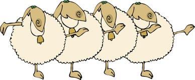 一排合唱绵羊 免版税库存图片
